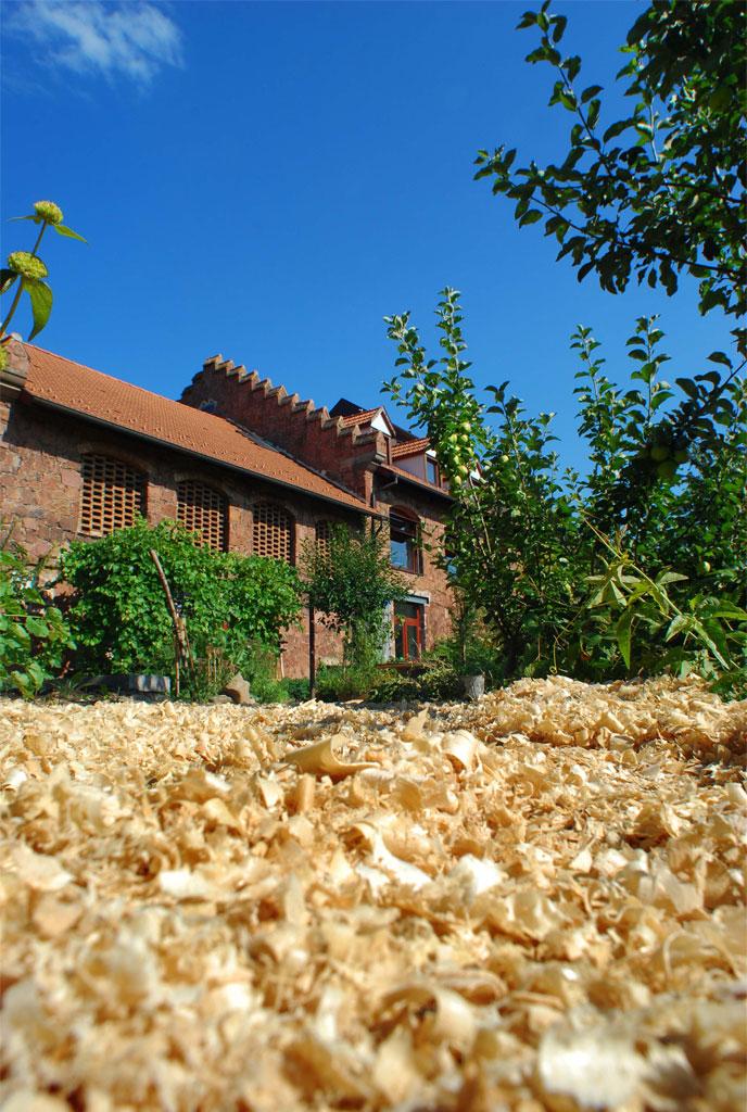 cnetre d'initiation à la Nature et à l'Environnement de Bussierre Strasbourg - photo PSA